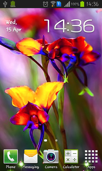 new Little summer flowers Android live wallpaper apk