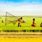 বাংলাদেশে কোন জেলায় কি সবচেয়ে বেশি উৎপাদিত হয
