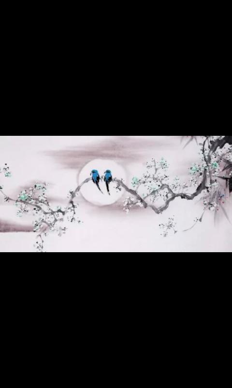 All Android বেব্যহারকারী ভাইদের জন্য নিয়ে আসলাম আসাধারণ একটি Wallpaper Theme Bule Bird Couple….. এটি সবারই ভাল লাগবেই। See This Post