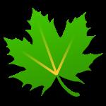 [Root] [Xposed] [Greenify] Android এ র্যাম(Ram) ফ্রি রাখার সবচেয়ে কার্যকর পদ্ধতি!