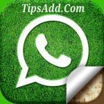 খুব সহজেই একটি মোবাইলে দুটি Whatsapp অ্যাকাউন্ট ব্যবহার করুন