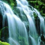 জীবনকে সুখী করতে কয়েকটি অতি মূল্যবান কথা
