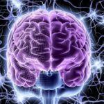 নিউরাল নেটওয়ার্ক | কেমন হবে যদি কম্পিউটার মানুষের মতো ভাবতে আরম্ভ করে? মানুষের ঘিলু ভার্সেস কম্পিউটার – মেগাটিউন