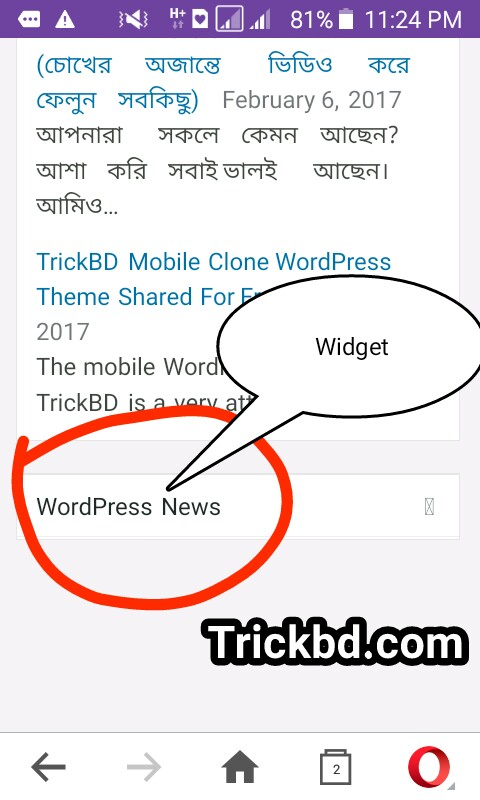 আপনার WordPress এর DashBoard এর Custom Widget Remove করুন