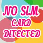 Custom Rom এর NO SIM CARD সমস্যার সমাধান