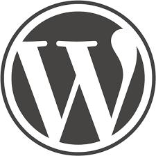 এবার আপনি নিজেই কাস্টমাইজ করুন WordPress এর লগিন পেজ।