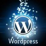 এখন আপনার WordPress সাইটের লগিন প্যানেলে মেসেজ যোগ করুন কোড দিয়ে।