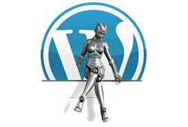 WordPress এ password দেবার সময় যেভাবে তা দেখাবেন