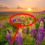 [Hot Post]এবার Ridmik Keyboard কিবোর্ডের Background চেজ্ঞ করুন ইচ্ছে মত,তাও আবার HD তে(With Screenshot)By Ridoy khan