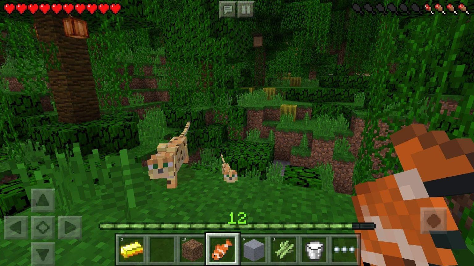 যারা Minecraft গেইম টি খেলতে ভালোবাসেন তাদের জন্য নিয়ে এলাম Minecraft এর মোড ভার্সন (এখনি সংগ্রহ করে ফেলুন)