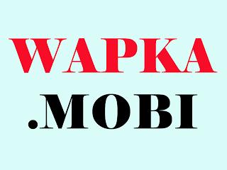 ওয়াপকা সাইটের জন্য অতি প্রয়োজনীয় ছোট ছোট কিছু কোডের সমাহার (wapka ইজাররা মিস করলেই লস)