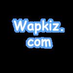 এবার wapkiz এ sumirbd এর মত ডাউনলোড সাইট বানান। পর্ব – ১ (স্ক্রিনশট সহ)