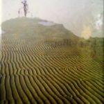 [PDF REVIEW] হুমায়ুন আহমেদ রচিত অত্যন্ত জনপ্রিয় হিমু Series এর খুব সুন্দর পাঁচটি বই। এখনি Download করে নিন।