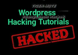 WordPress ওয়েব সাইট Hack করে আপনিও হতে পারবেন একজন দক্ষ হ্যাকার | D-TECT wordpress ওয়েব সাইট হ্যাকিং | Termux