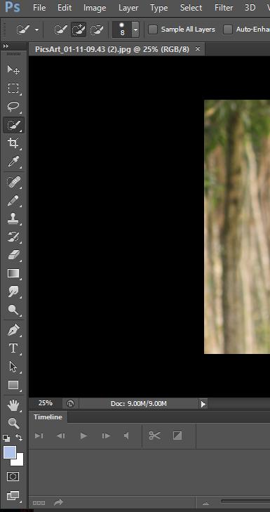 Adobe Photoshop CS6 Lite