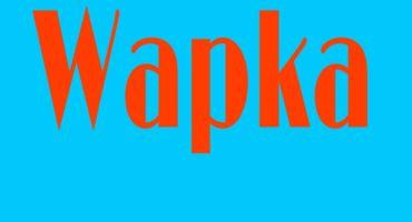 এখন থেকে, আপনার ওয়াপকা,সাইটে,নিজেই স্টালিস  লেখা লিখুন,,কোনে রকম কিবোর্ড  ছারা