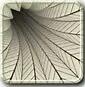 [Apps Review]অ্যান্ড্রয়েড় ফোনের জন্য সেরা একটি 3D Live Wallpapers Apps, যা আপনার অ্যান্ড্রয়েড মোবাইল ফোনকে সুন্দর স্কিন দেখাবে।,ছোট একটা Apps দিয়ে।[Apps Size:8.20MB]