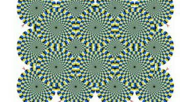 optical illusion এর জন্য অসাধারণ একটি এপ্স।  ( কেউ মিস করবেন না )