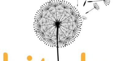 🆕 নিজের পছন্দ মতো শব্দ দিয়ে লিংক শর্ট করুন এবং লিংকের QR Code তৈরী করে নিন একদম ফ্রীতে 🆓