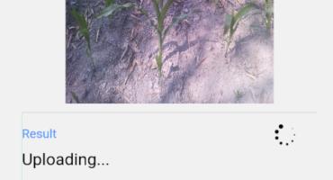 যেকোনো ছবি(ফটো) আপলোড করে তার সকল তথ্য বের করুন মাত্র ছোট একটি অ্যাপ দিয়ে।