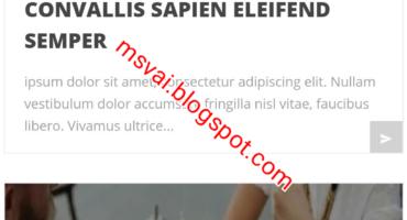 Download করে নিন VEINNA Premium Blogger Template With Documentation