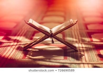 👍👍[কোরআনের আলো পর্ব ১৫] রাসুল (সঃ) এর মুজিযা সম্পর্কে জানতে পারবো📖📖