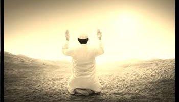 👍👍[কোরআনের আলো পর্ব ২৬]ইবরাহীম (আঃ), সারা ও অত্যাচারী বাদশাহ'র কাহিনী সম্পর্কে জানতে পারবো  📖📖