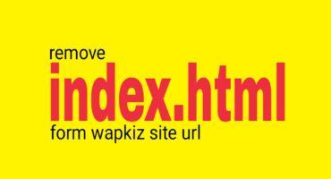 ওয়াপকিজ সাইটের Url থেকে index.html লেখা মুছে ফেলে আপনার ওয়াপকিজ সাইটকে পিএইসপি লুক দিন