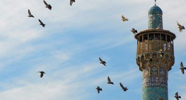 👍👍[কোরআনের আলো পর্ব ১০৬]ইসলামে স্বাধীনতা সম্পর্কে জানতে পারবো 📖📖