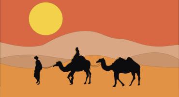 ইসলামিক শিক্ষামূলক ঘটনা । মুআবিয়া (রাঃ) এর তাহাজ্জুদ নামায । প্রিয়নবীজীর (সাঃ) বদান্যতা