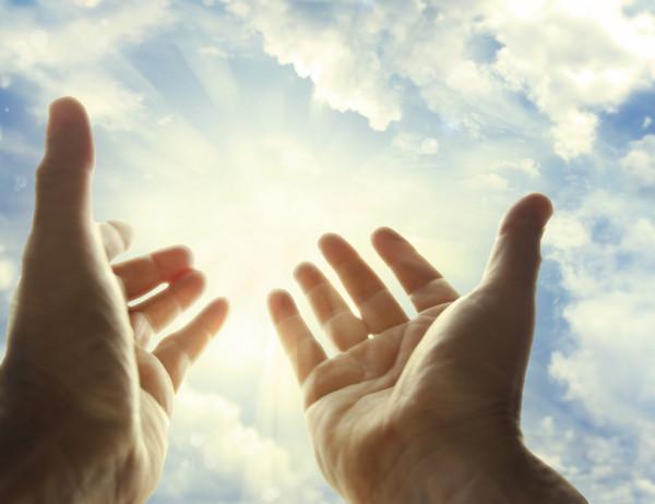 জেনে নিন আপনার কোন আমলটি  আপনাকে নিশ্চিত জান্নাতে প্রবেশ করাবে ।