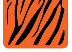 বাংলালিংক সিমে আনলিমিটেড Toffee এমবি ফ্রিতে নিয়েনিন,প্রতিবার ৫১২ এমবি করে। সাথে থাকছে আনলিমিটেড মেয়াদ বাড়িয়ে নেওয়ার ট্রিকস