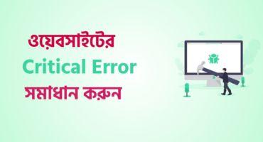 কীভাবে ওয়ার্ডপ্রেস ওয়েবসাইটের Critical Error সমস্যার সমাধান করবেন (2 Methods)